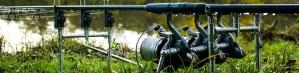 Karpervissen