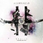 Assemblage 23 – Bruise