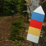 19e Drents Friese Woud wandelvierdaagse Diever – dag 1