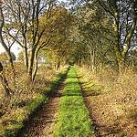 Loop van de Drentsche Aa tussen Grolloo en Deurze