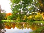 Herfstkleuren in gracht Ommerschans 1_klein