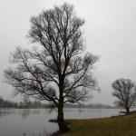 Langs het IJsselpad van Olst naar Zwolle