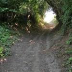 Wandelingen in Limburgs heuvelland rond Schin op Geul