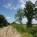 Wandelen in het Nationaal Park De Meinweg