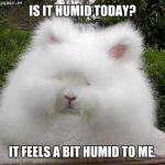 Controlling the Humidity in your RV Products that Work for Us