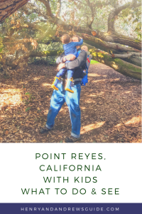 Point Reyes with a Toddler and a Baby | San Francisco with Kids | Henry and Andrew's Guide (www.henryandandrewsguide.com)