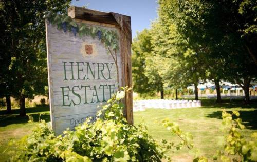 Henry Estate Winery vineyards