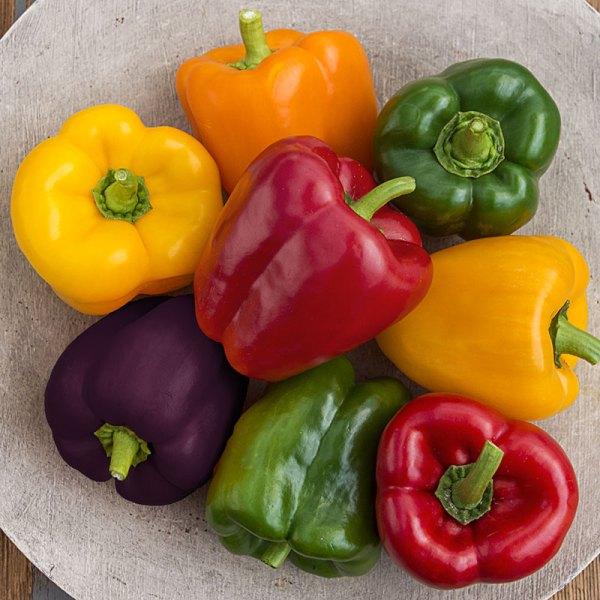 Sweet Bell Pepper Hybrid Mix Henry Field39s Seed