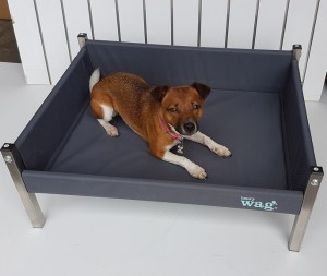 Henry Wag small elevated dog bed