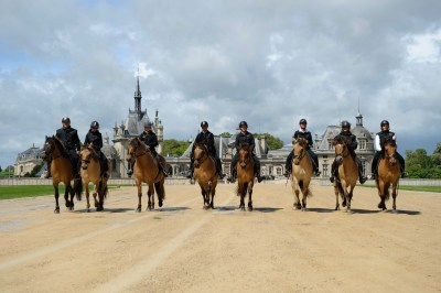 Ride with the Henson horses in front of the Castle of Chantilly