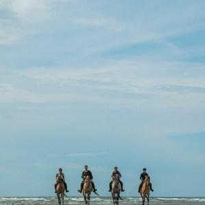 Balade en Baie d'Authie avec les chevaux Henson