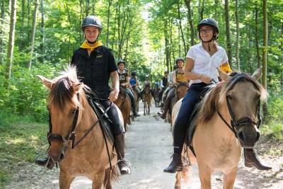 Balade avec les chevaux Henson dans le parc du château de Chantilly