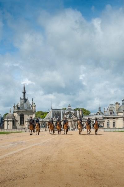 Balade avec les chevaux Henson au château de Chantilly
