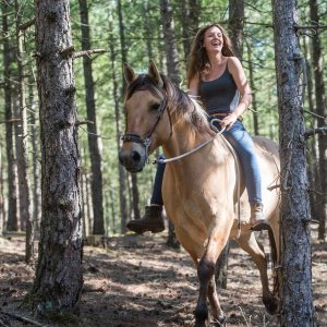Ride with the Henson horses in the Domain of the Marquenterre