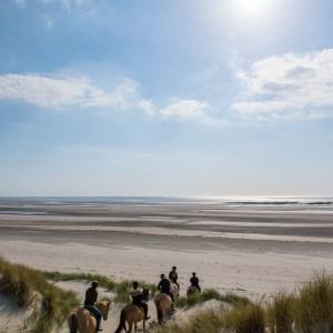 Arrivée sur la plage avec les chevaux Henson