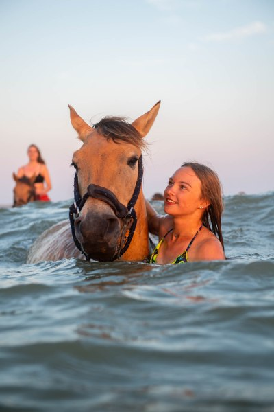 Swimming with the Henson horses