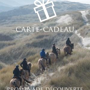 Carte-Cadeau | Promenade Découverte en Baie d'Authie