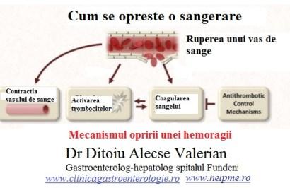 creșterea trombocitelor în varicoză)