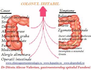 colon-iritabil-cauze