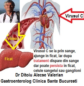 Hepatita C nu se vindeca total