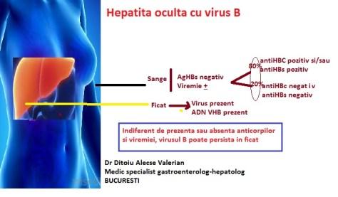 Purtator sanatos de virus b