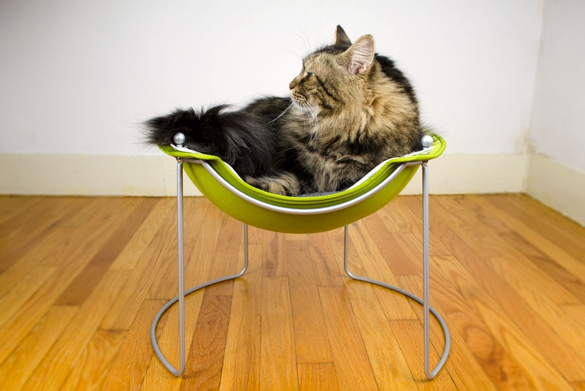 Hepper Cat Bed Buy A Modern Cat Bed That Your Pet Will Love