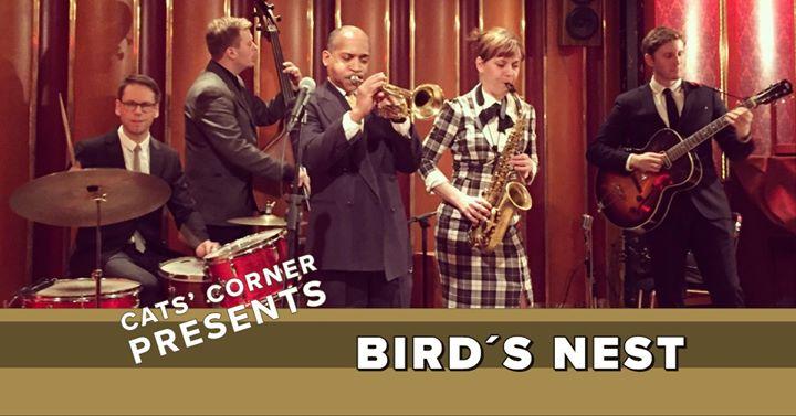 Wednesday Night Hop, Bird's Nest live on stage