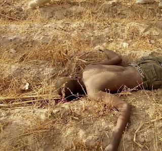 armed-bandit-dead