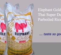 elephant_group
