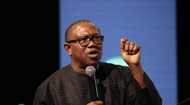 Atiku's running mate, Peter Obi