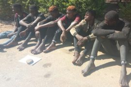 Plateau suspects