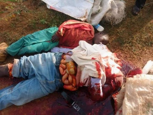 Suspected herdsmen behead father, son, slaughter pregnant woman in Plateau (graphic photos)