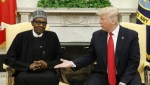 Trump yet to send Promised Ventilators to Nigeria – Minister