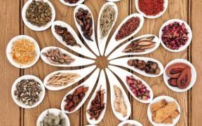 רפואה סינית - צמחי מרפא