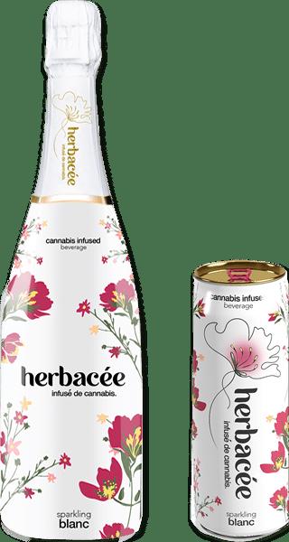 Herbacée