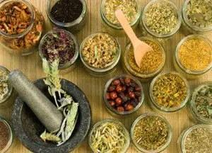 herbs for Parkinson's disease