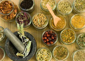 herbs for Parkinson's disease
