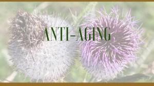 Anti-aging herbal remedies