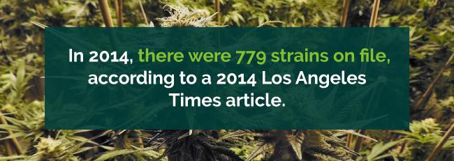 number of strains