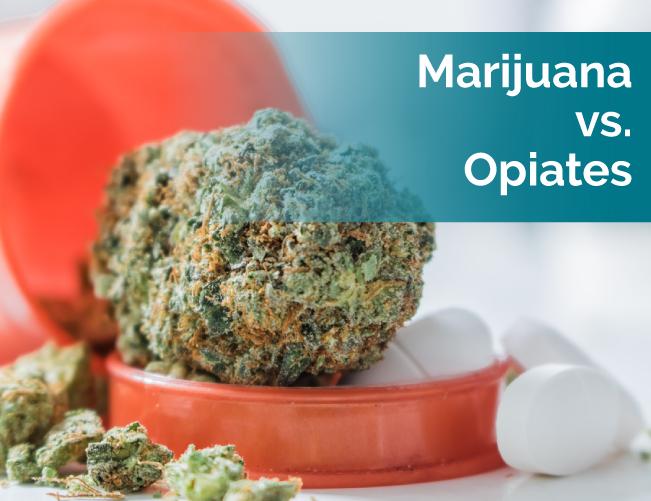 marijuana vs opiates