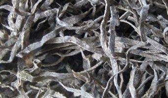 Algue séchée (hai dai) – 海 帶 或 昆 布