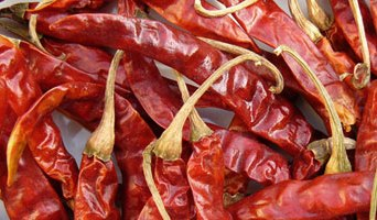Petit piment rouge (hong la jiao) – 紅 辣 椒