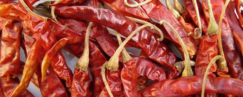 Petit piment rouge (hong la jiao) – 紅 辣 椒