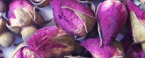 rose sechee