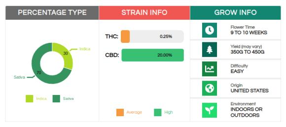 strain information CB Diesel