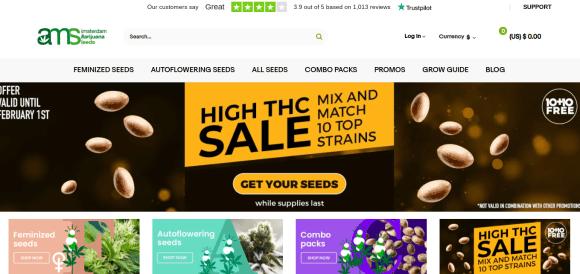 Amsterdam Marijuana Seeds Website Front Page