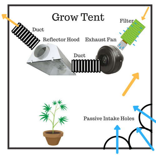 how to set up your grow tent for an