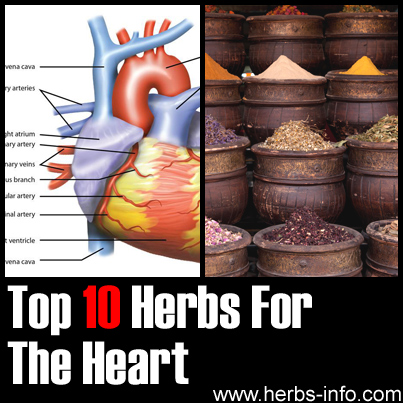 Herbs For The Heart