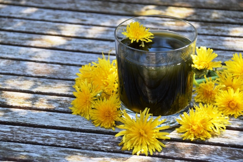 9 day dandelion liver cleanse