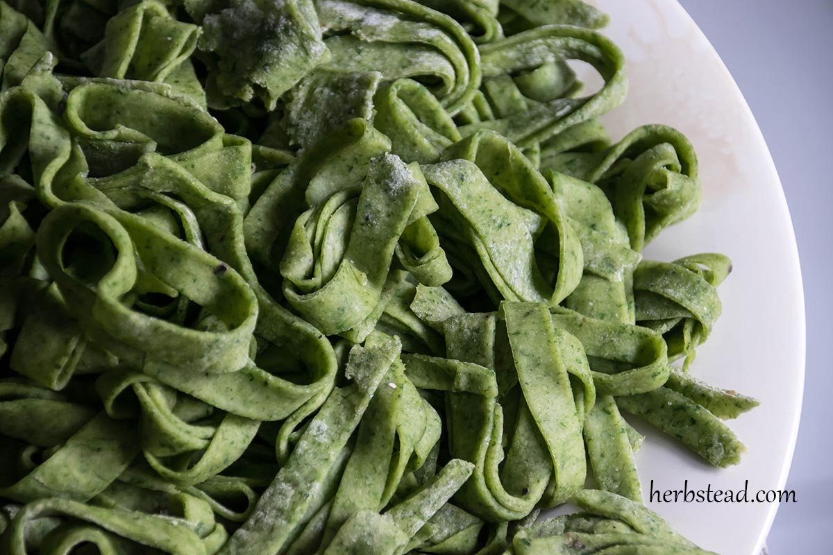 Nettle Pasta Recipe - A delicious way to add more nettles to your diet ...